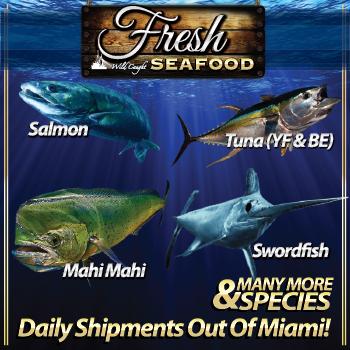Western Edge Fresh Seafood