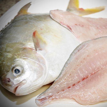Western Edge Seafood Golden Pompano